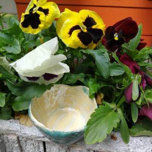 bol ceramic plante